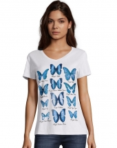 Butterfly Collection/White