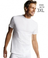 Hanes Men's White TAGLESS Crewneck Undershirt P5