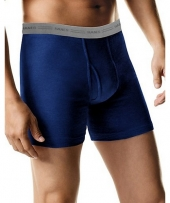 Hanes TAGLESS Men's Boxer Briefs
